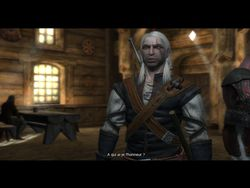 test the witcher pc image (42)
