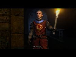 test the witcher pc image (55)