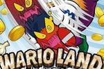 Test Wario Land The Shake Dimension