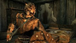 The Elder Scrolls 5 Skyrim (3)