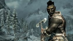 The Elder Scrolls 5 Skyrim (5)