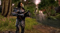 The Elder Scrolls Online - 1