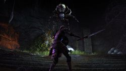The Elder Scrolls Online - 8