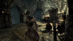 The Elder Scrolls Skyrim (7)