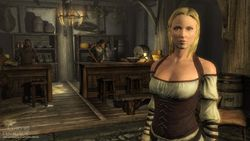 The Elder Scrolls V Skyrim - Image 12