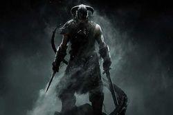 The Elder Scrolls V Skyrim - vignette