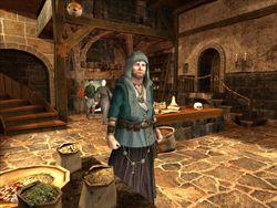 The Guild 2 Pirates of the European Seas (6)