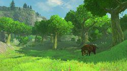 The Legend of Zelda - Breath of the Wild - 10