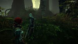 The Witcher 2 : Assassins of Kings - 4