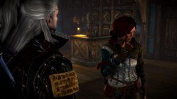 The Witcher 2 - Image 106