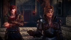 The Witcher 2 - Image 108
