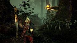 The Witcher 2 - Image 10