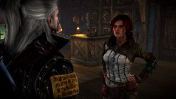 The Witcher 2 - Image 111