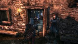 The Witcher 2 - Image 21