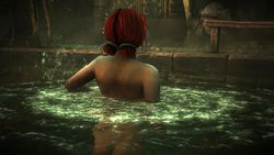 The Witcher 2 - Image 25