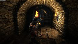 The Witcher 2 - Image 31