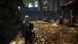 The Witcher 2 - Image 3