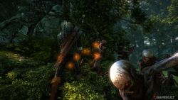 The Witcher 2 - Image 50