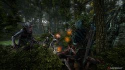 The Witcher 2 - Image 51