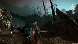 The Witcher 2 - Image 70