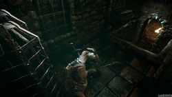 The Witcher 2 - Image 76