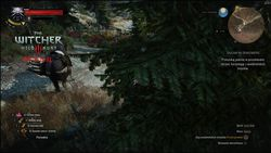 The Witcher 3 HD Reworked - 3