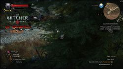 The Witcher 3 HD Reworked - 4