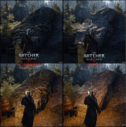 The Witcher 3 HD Reworked