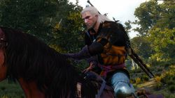 The Witcher 3 ild Hunt - 2