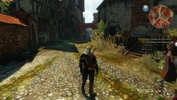 The Witcher 3 ild Hunt - 3