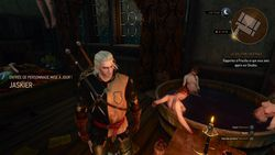 The Witcher 3 ild Hunt - 6