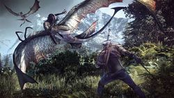 The Witcher 3 : Wild Hunt - 4