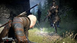 The Witcher 3 Wild Hunt - 5