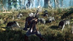 The Witcher 3 : Wild Hunt - 6