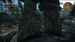 The Witcher 3 Wild Hunt - comparatif 2