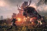 The Witcher 3 : Wild Hunt - vignette
