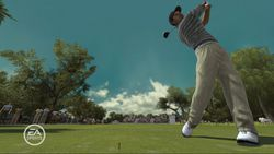 Tiger woods pga tour 08 image 3