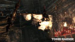 Tomb Raider (13)