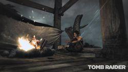 Tomb Raider (16)