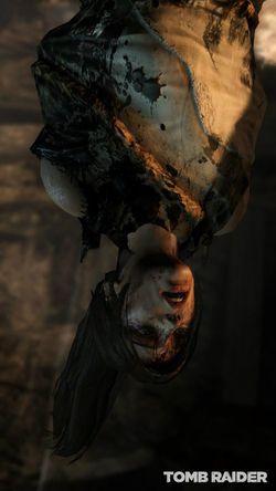 Tomb Raider (5)
