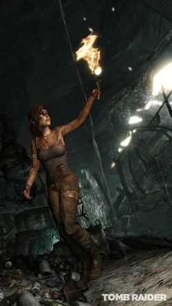 Tomb Raider (7)