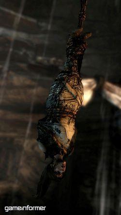 Tomb Raider - Image 83