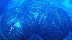 Tomb Raider Underworld   Image 15