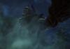 Toukiden 2 : un trailer pour son lancement sur PS4 et PS Vita