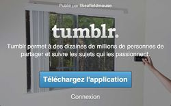 Tumblr web mobile