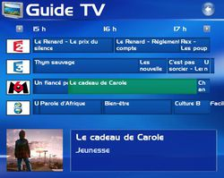 tv_grille