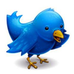 twitter-bird-logo