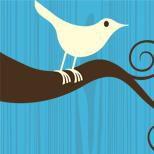 Twitter logo pro