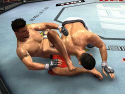 UFC 2009 Undisputed   Image 12