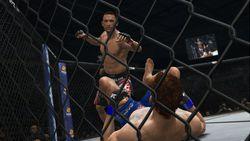 UFC Undisputed 3 (5)
